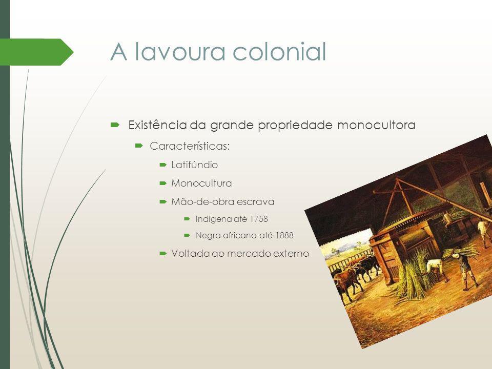 A lavoura colonial Existência da grande propriedade monocultora