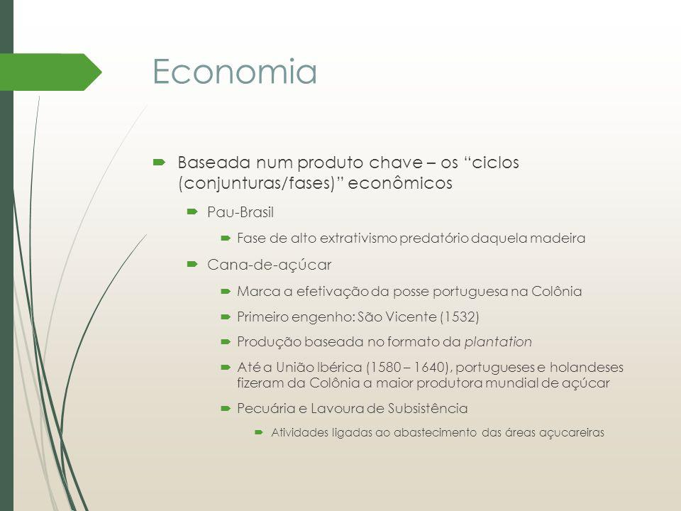 Economia Baseada num produto chave – os ciclos (conjunturas/fases) econômicos. Pau-Brasil. Fase de alto extrativismo predatório daquela madeira.