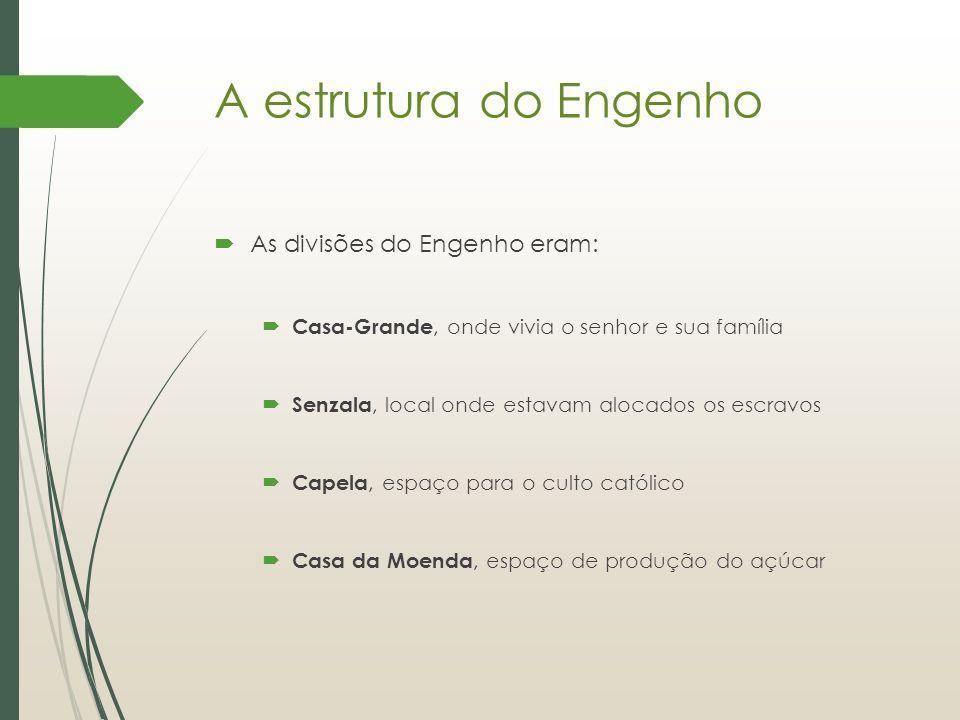 A estrutura do Engenho As divisões do Engenho eram: