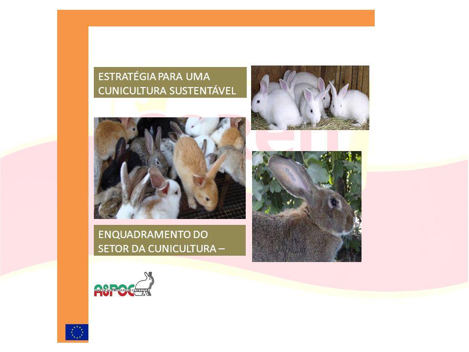 ENQUADRAMENTO DO SETOR DA CUNICULTURA – PAC 2013