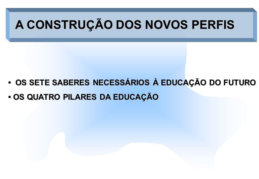 A CONSTRUÇÃO DOS NOVOS PERFIS