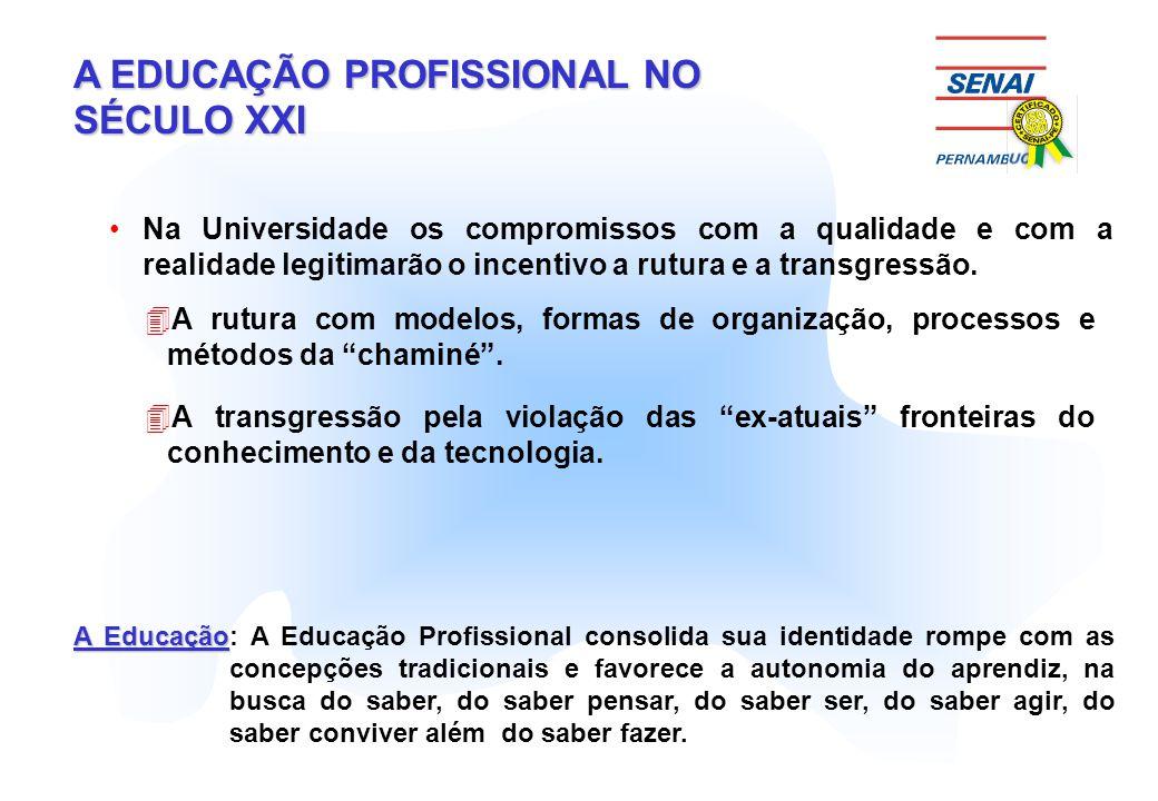 A EDUCAÇÃO PROFISSIONAL NO SÉCULO XXI