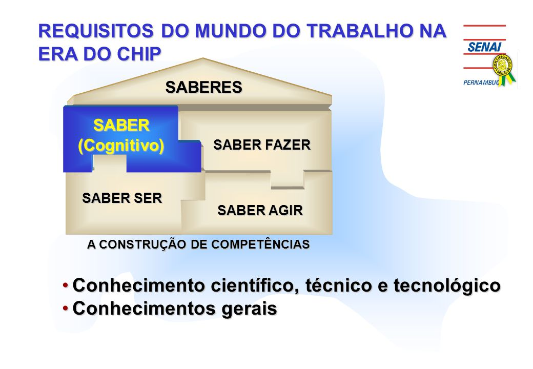 A CONSTRUÇÃO DE COMPETÊNCIAS