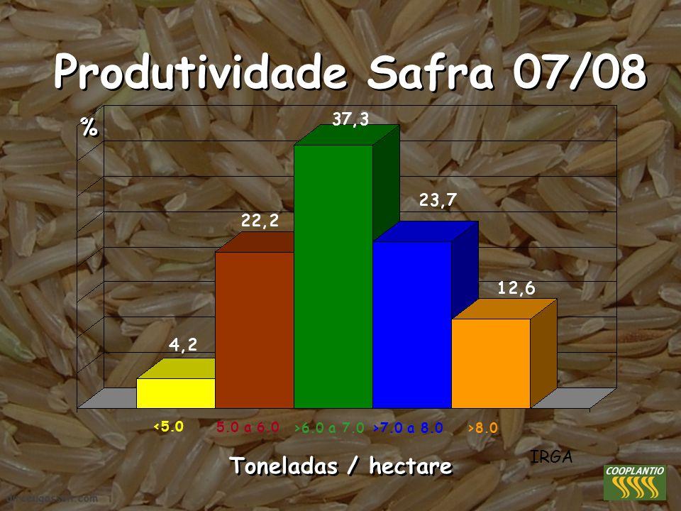 Produtividade Safra 07/08 % Toneladas / hectare IRGA <5.0 5.0 a 6.0