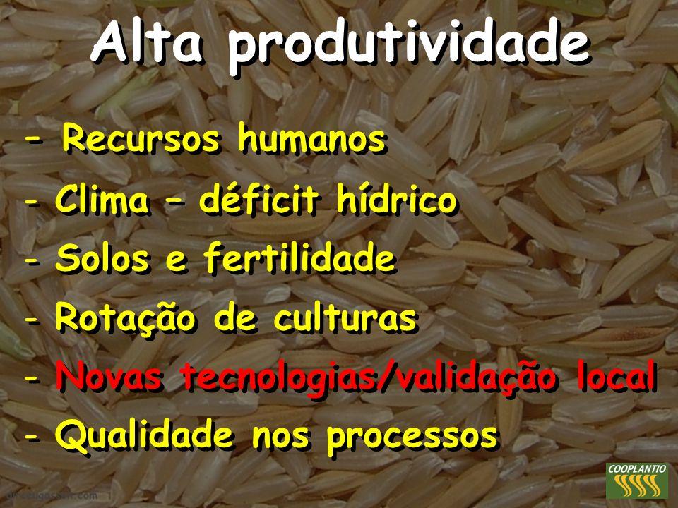 Alta produtividade Recursos humanos Clima – déficit hídrico