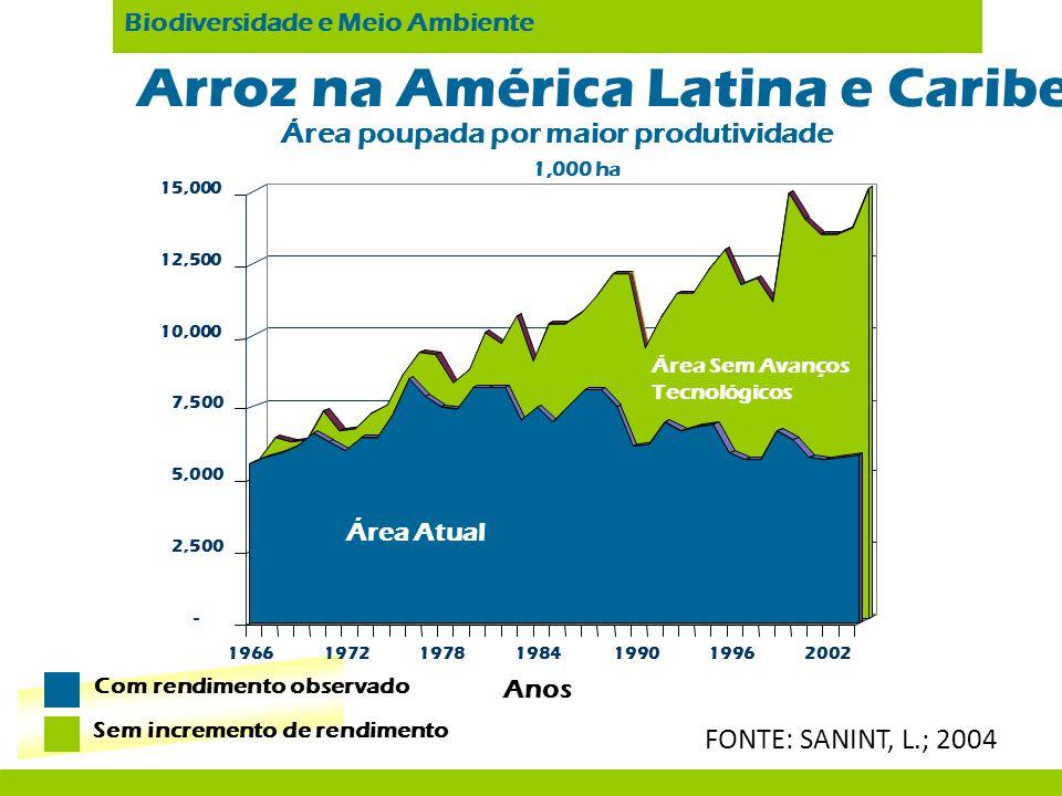 Arroz na América Latina e Caribe