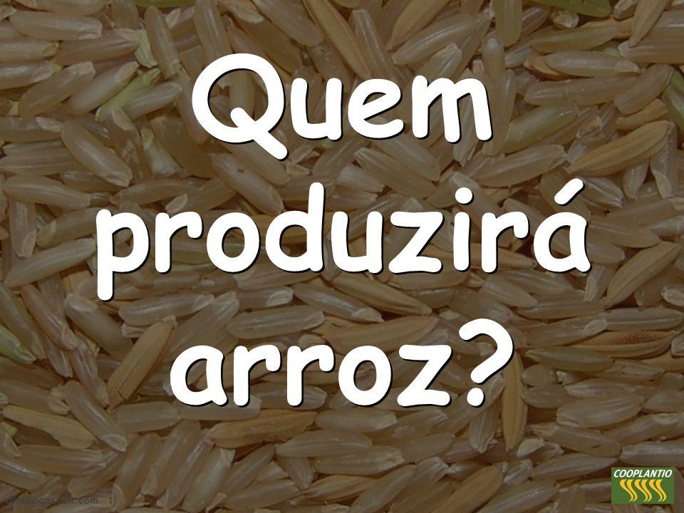 Quem produzirá arroz