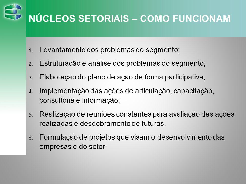 NÚCLEOS SETORIAIS – COMO FUNCIONAM