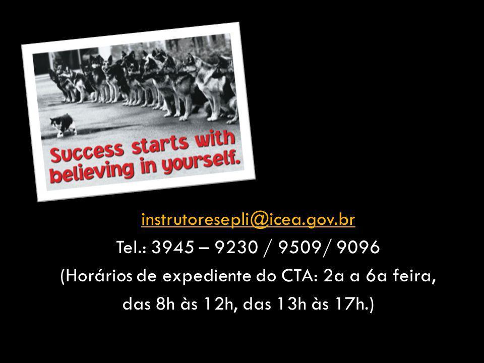 instrutoresepli@icea. gov. br Tel