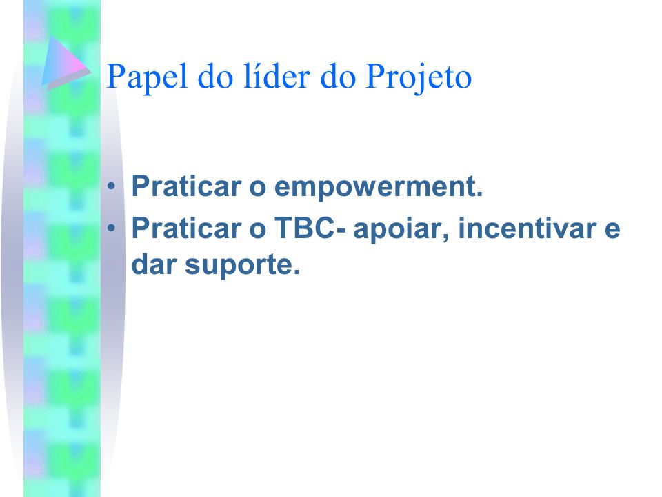 Papel do líder do Projeto