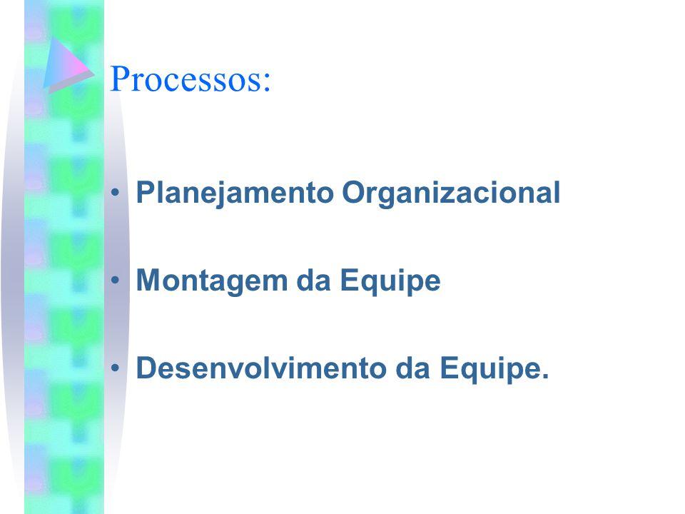 Processos: Planejamento Organizacional Montagem da Equipe