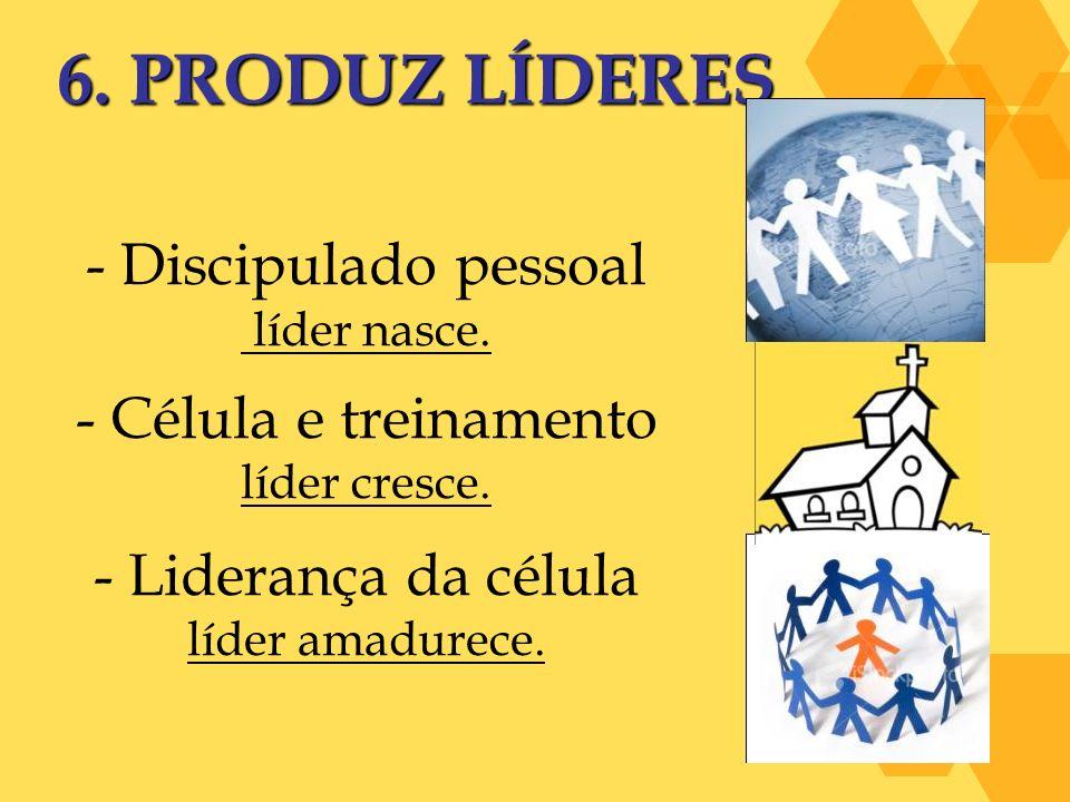 6. PRODUZ LÍDERES Discipulado pessoal Célula e treinamento