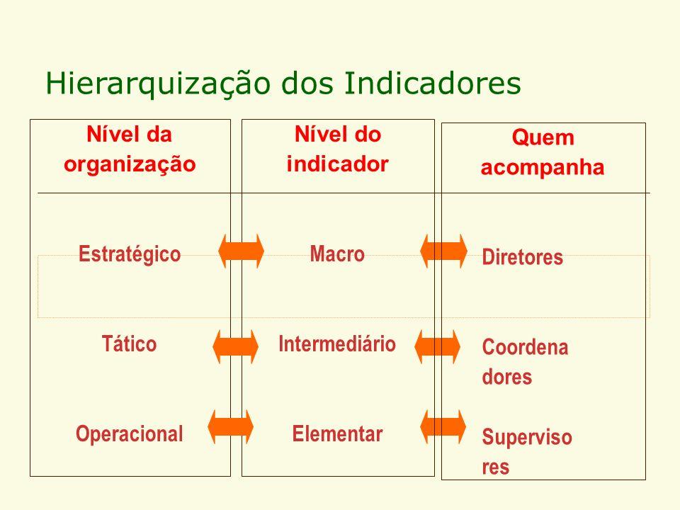 Hierarquização dos Indicadores