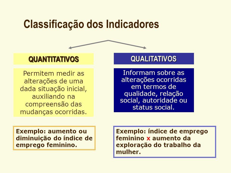 Classificação dos Indicadores