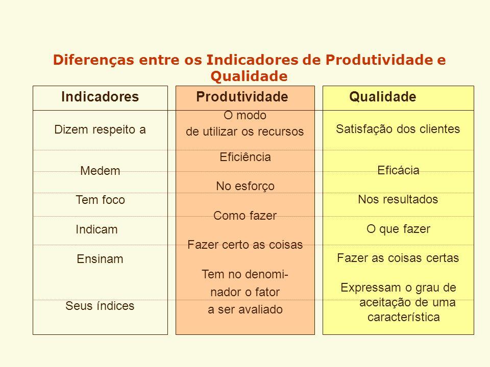 Diferenças entre os Indicadores de Produtividade e Qualidade