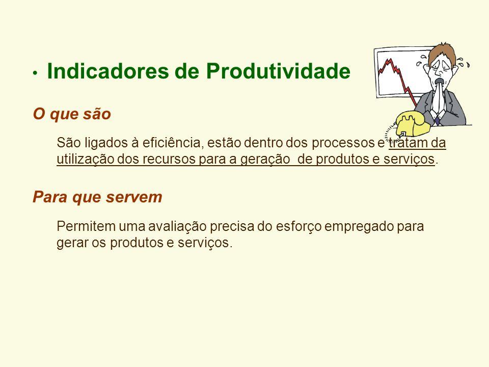 Indicadores de Produtividade O que são