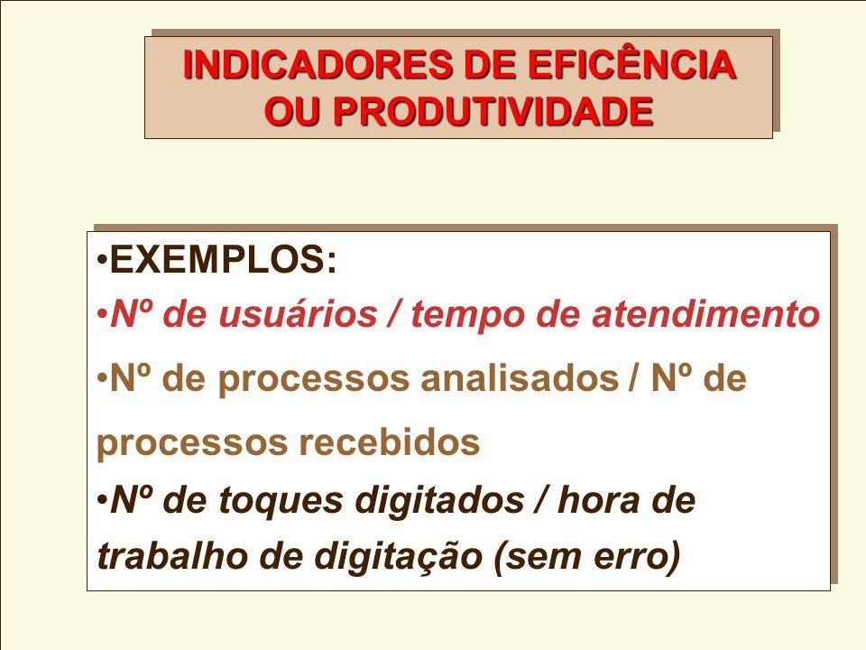 INDICADORES DE EFICÊNCIA OU PRODUTIVIDADE