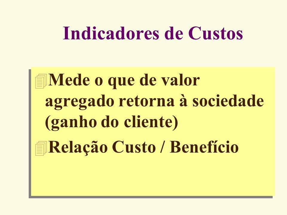Indicadores de CustosMede o que de valor agregado retorna à sociedade (ganho do cliente) Relação Custo / Benefício.