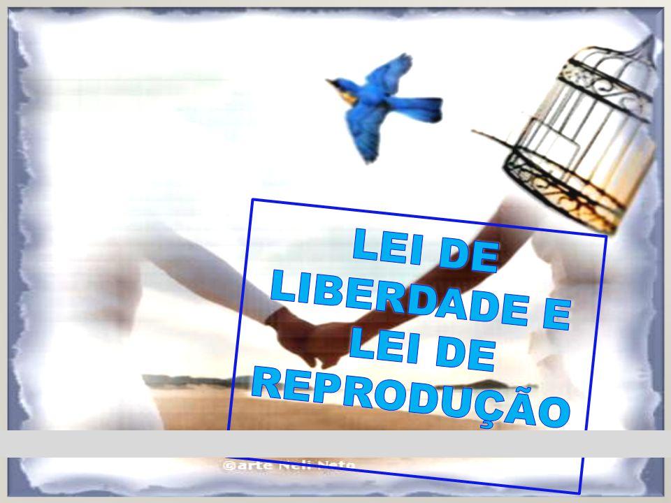 LEI DE LIBERDADE E LEI DE REPRODUÇÃO