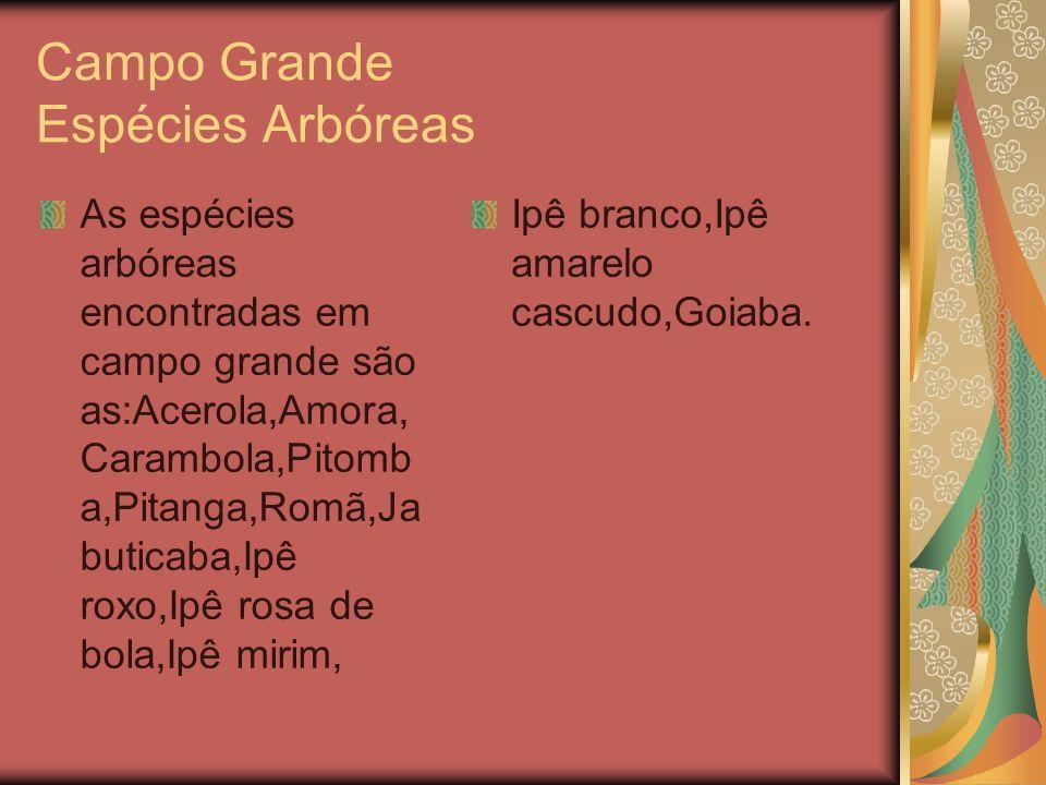 Campo Grande Espécies Arbóreas