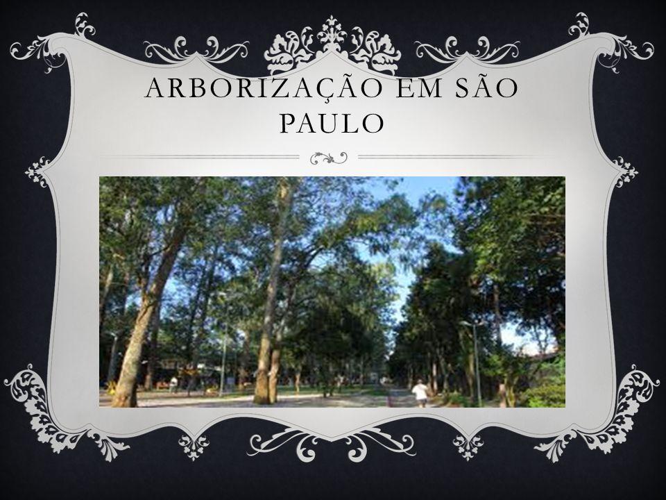 ARBORIZAÇÃO EM SÃO PAULO