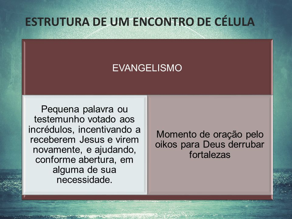 ESTRUTURA DE UM ENCONTRO DE CÉLULA