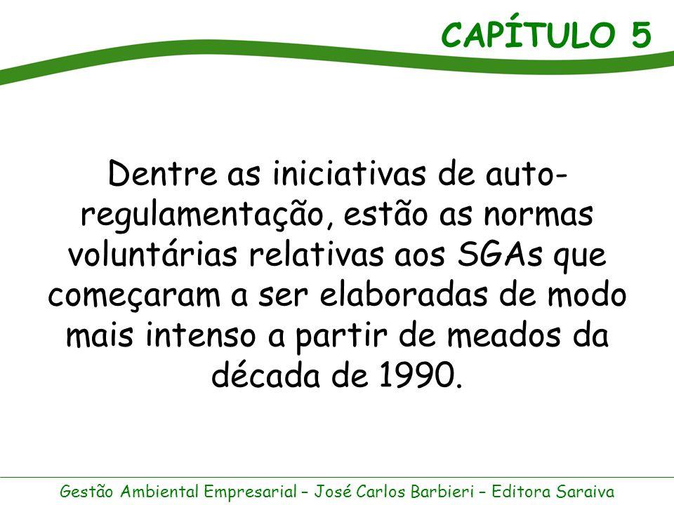 Dentre as iniciativas de auto-regulamentação, estão as normas voluntárias relativas aos SGAs que começaram a ser elaboradas de modo mais intenso a partir de meados da década de 1990.