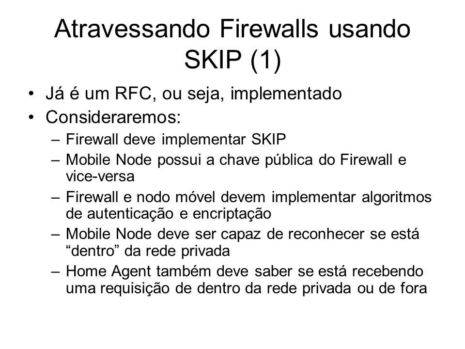Atravessando Firewalls usando SKIP (1)