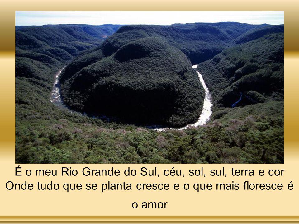 É o meu Rio Grande do Sul, céu, sol, sul, terra e cor Onde tudo que se planta cresce e o que mais floresce é o amor