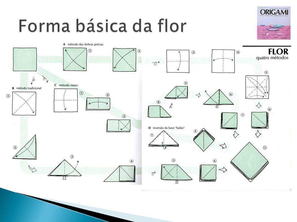 Forma básica da flor