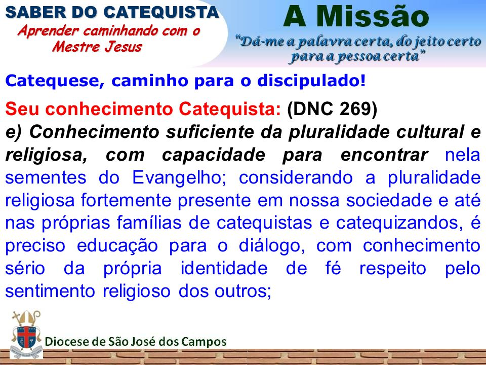 Seu conhecimento Catequista: (DNC 269)