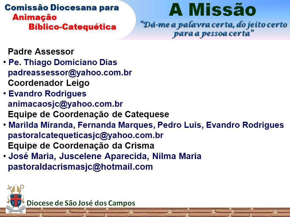Pe. Thiago Domiciano Dias padreassessor@yahoo.com.br Coordenador Leigo