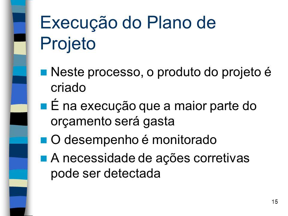 Execução do Plano de Projeto