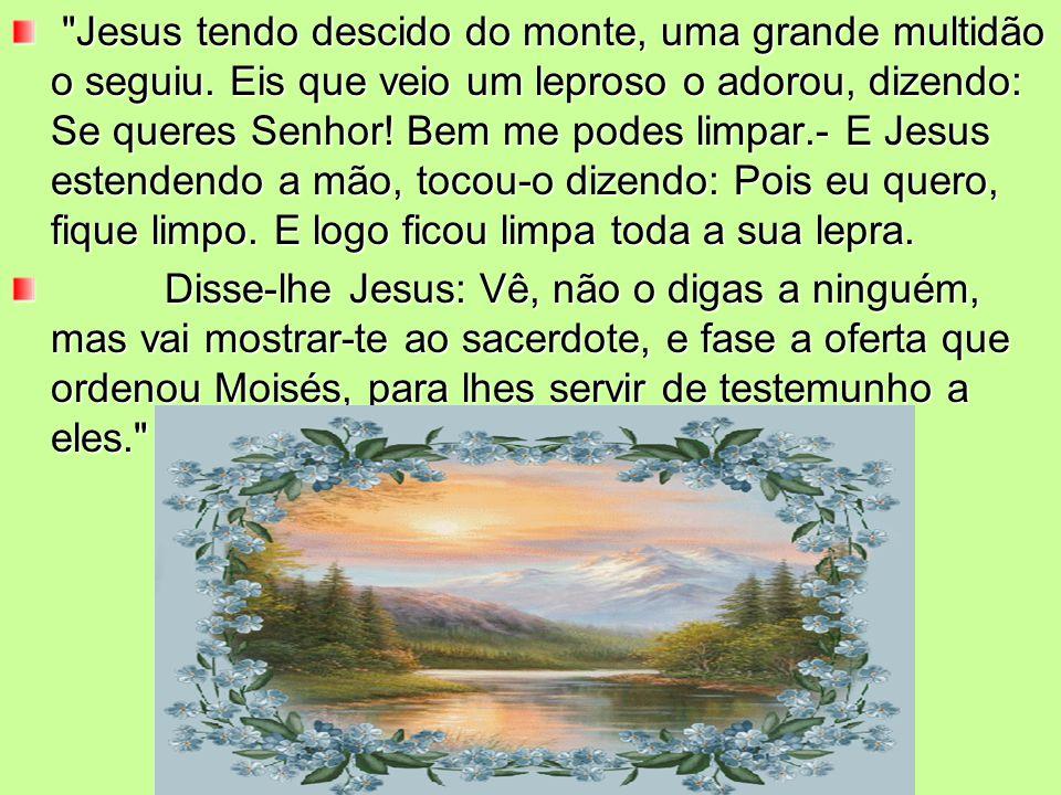 Jesus tendo descido do monte, uma grande multidão o seguiu