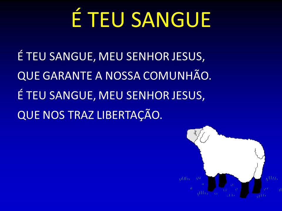 É TEU SANGUE É TEU SANGUE, MEU SENHOR JESUS,