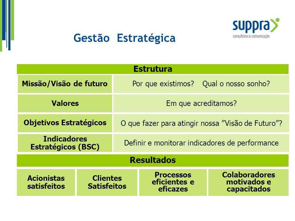 Gestão Estratégica Estrutura Resultados Missão/Visão de futuro