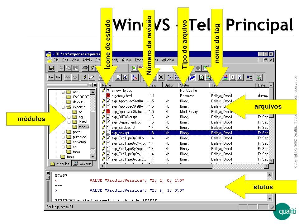 WinCVS – Tela Principal