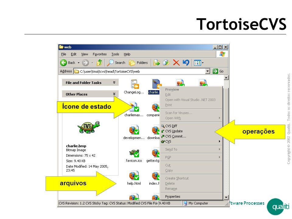 TortoiseCVS Ícone de estado operações arquivos arquivos