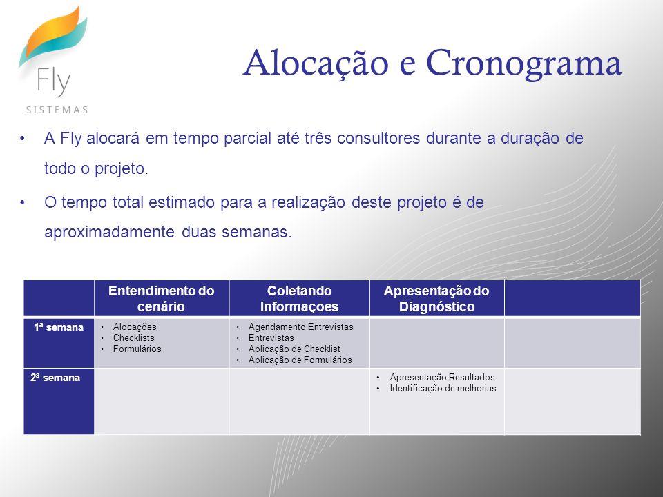 Alocação e Cronograma A Fly alocará em tempo parcial até três consultores durante a duração de todo o projeto.