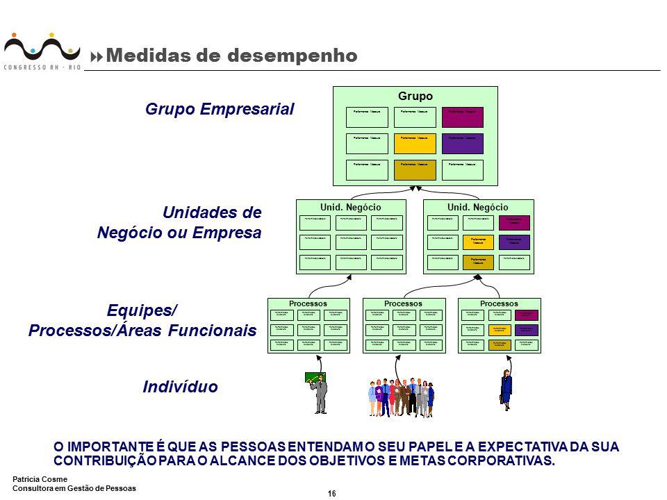 Equipes/ Processos/Áreas Funcionais