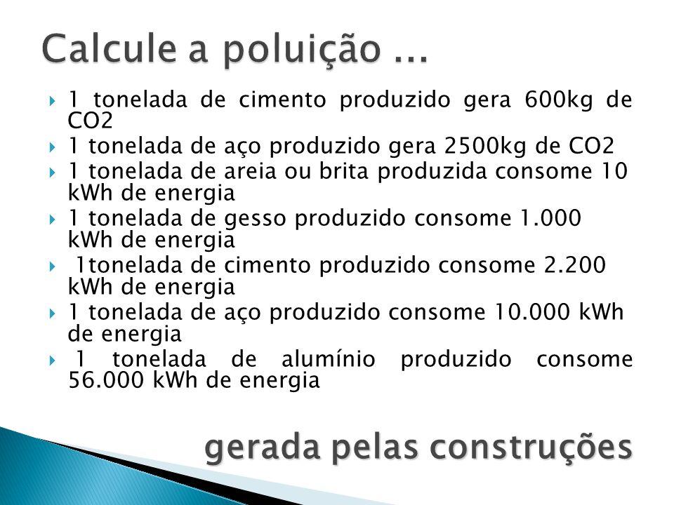 Calcule a poluição ... gerada pelas construções