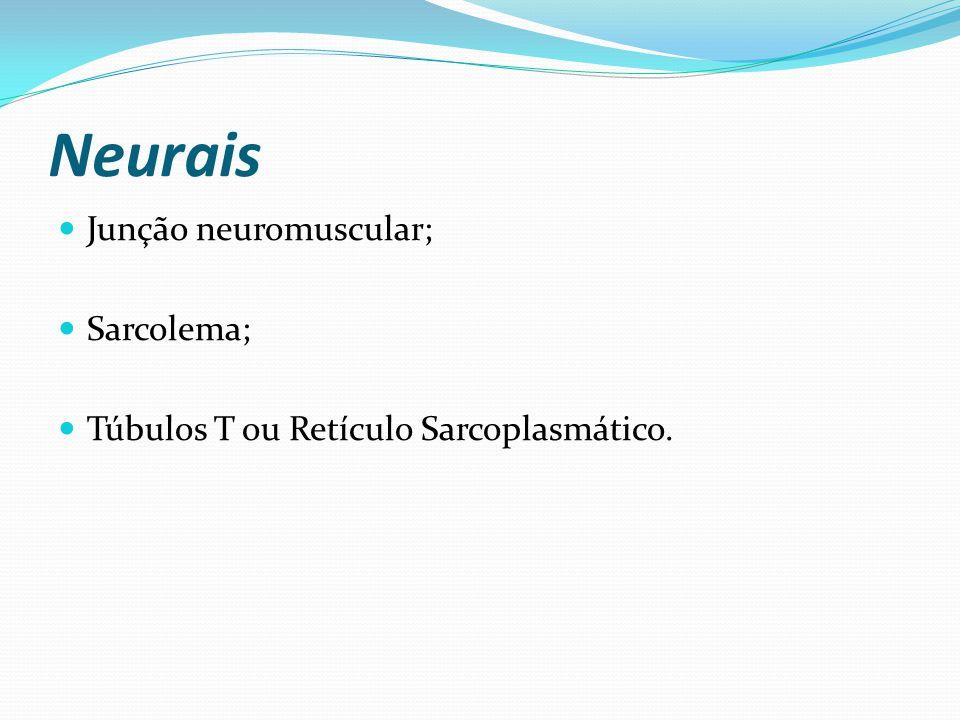 Neurais Junção neuromuscular; Sarcolema;