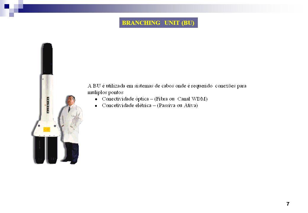 BRANCHING UNIT (BU)