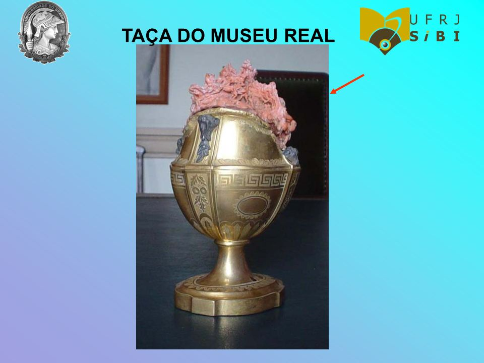 TAÇA DO MUSEU REAL