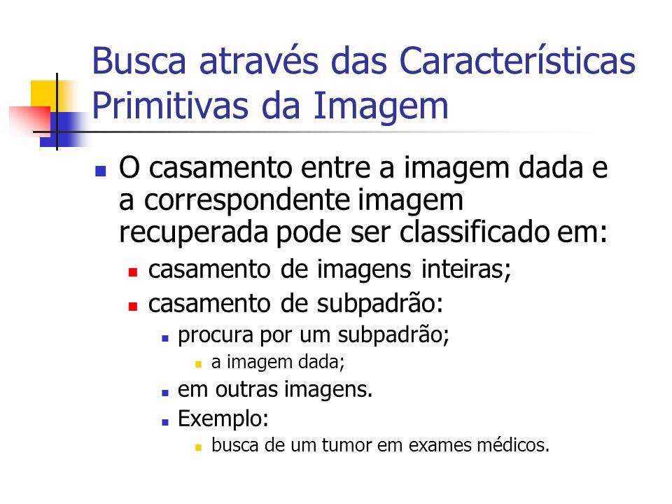 Busca através das Características Primitivas da Imagem