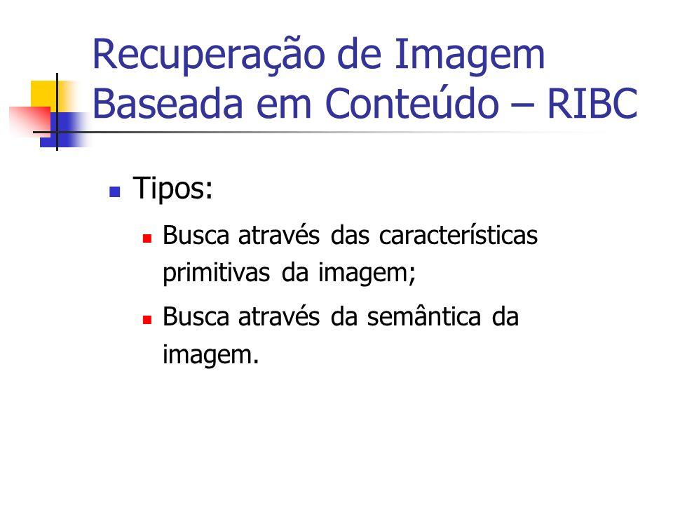 Recuperação de Imagem Baseada em Conteúdo – RIBC