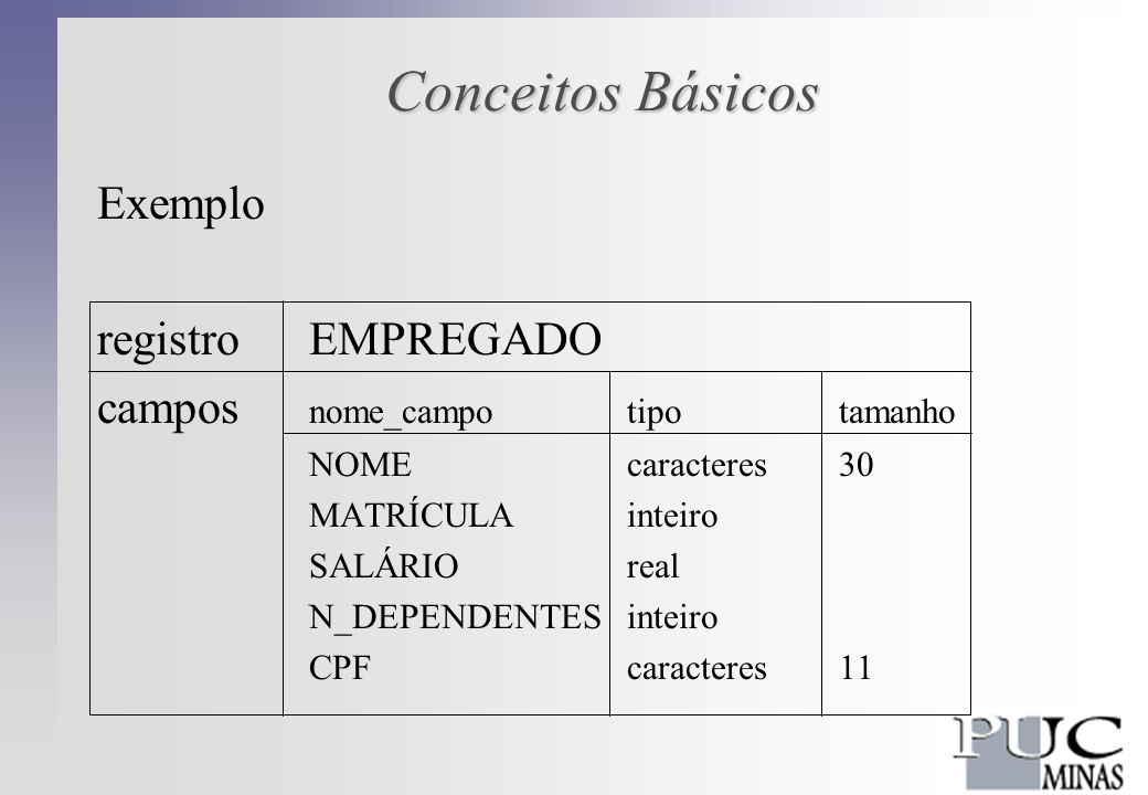 Conceitos Básicos Exemplo registro EMPREGADO