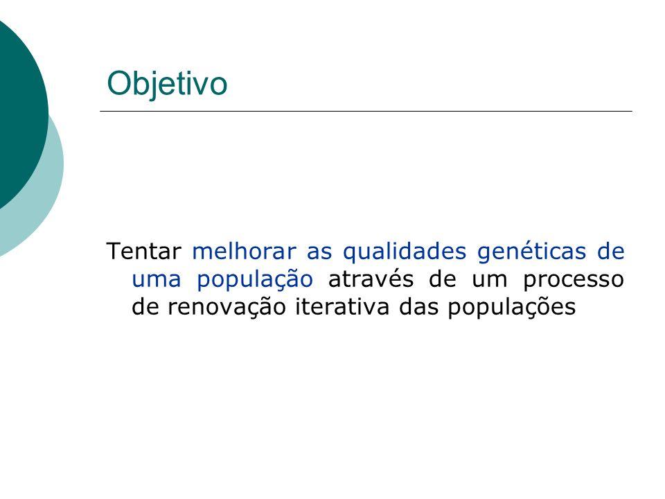 Objetivo Tentar melhorar as qualidades genéticas de uma população através de um processo de renovação iterativa das populações.
