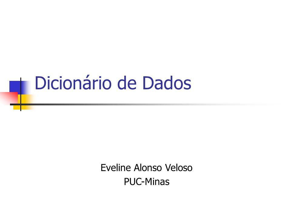 Dicionário de Dados Eveline Alonso Veloso PUC-Minas