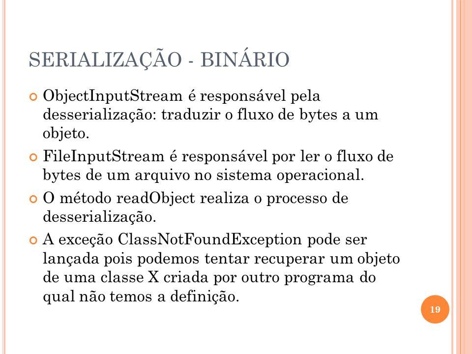 SERIALIZAÇÃO - BINÁRIO